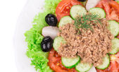 Close up of tuna salad. — Stock Photo