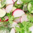 Radish salad — Stock Photo #49064075