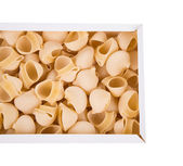 Uncooked pasta lumaconi — Stock Photo
