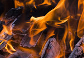 Blazing fire. — Stock Photo