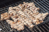 Grilled meat in special fixture. — Stock Photo