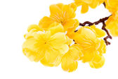 Artificial yellow flowers  — Stock Photo