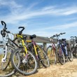 A lot of bicycles — Stock Photo #29017797