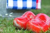 Little wooden shoes — Stock Photo