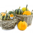 Pumpkin in reed basket — Stock Photo
