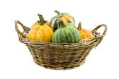 Pumpkin in reed basket isolated on white — Stock Photo