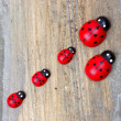 Wooden minature ladybirds — Stock Photo