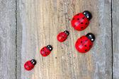 Houten miniatuur lieveheersbeestjes — Stockfoto
