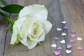 Close up of a white rose and colored heart candies — Stockfoto