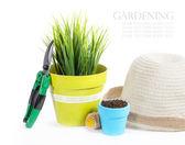 Gartengeräte mit pflanzen und grünpflanzen, die isoliert auf weißem hintergrund — Stockfoto