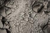 Textura de terra seca — Fotografia Stock