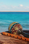 Maracas and fife with a sea background — Stock Photo