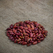Dry Red haricot beans — Stock Photo