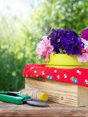Blooming petunia and garden equipment — ストック写真