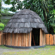 Traditional hut  Papuans — Stock Photo