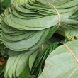 Betel leaf on market — Foto Stock #37022721