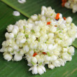 Asian white flowers. Shallow depth of field — Stock Photo