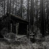 Skogen av rädsla — Stockfoto