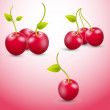 Cherry-Vector — Stockvektor #26900573