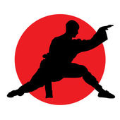 Martial arts — Stockvector