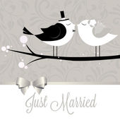 Just married birds — Stock Vector