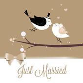 刚刚结婚的鸟 — 图库矢量图片