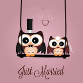 Just married owls — Stock Vector