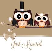 ちょうど結婚 — ストックベクタ