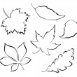 Stylized leaves — Stock Vector #26242129
