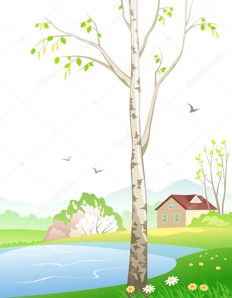 Картинки с березой весной