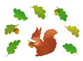 Squirrel and oak leaves — Stock Vector