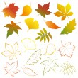 Falling leaves set — Stock Vector