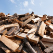 Bunch of wooden logs — Stockfoto #30259957