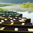 图库照片: Ten boats anchored on bank of pond