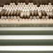 Stock Photo: Cigarette filters prepared for filling