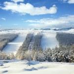 Ski slopes in the ski center — Stock Photo