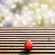 Wooden floor and easter egg with idyllic bokeh — Stock Photo #38349933