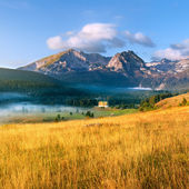 Mountain landscape. Durmitor National Park - Montenegro  — Stock Photo