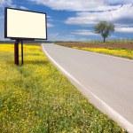 Road through the idyllic scenery and billboard — Stock Photo #46914139
