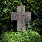 Постер, плакат: Stone cross in leaves at the cemetery