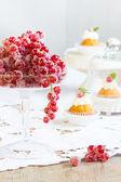 Sugared redcurrant. — Stock Photo