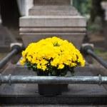 Fresh flowers on grave. Cimitero Monumentale, Milan — Stock Photo #33643355