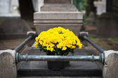 Fresh flowers on grave. Cimitero Monumentale, Milan — Стоковое фото