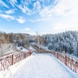 Beautiful winter scenery. Siberia — Stock Photo