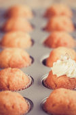 Fresh cupcakes — Stock Photo