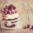 Stock Photo: Vintage chocolate cupcake with sugared redcurrant