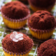 Homemade cupcakes decorated with cocoa powder. — Stock Photo