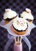 Bouquet of little cupcakes. — Stok fotoğraf