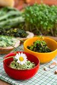 Green pesto garnished with beautiful daisy — Stock Photo