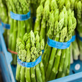 Fresh green asparagus — Stock Photo